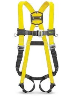 Rental store for SAFETY HARNESS W LANYARD in Boone NC